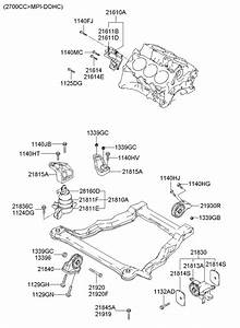 2015 Hyundai Santa Fe Engine Diagram : 2162039002 hyundai bracket assembly engine support ~ A.2002-acura-tl-radio.info Haus und Dekorationen