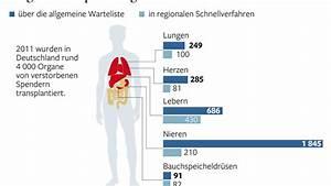 Kalter Fussboden Was Tun : nach manipulationen was tun gegen korruption mit organspenden welt ~ Whattoseeinmadrid.com Haus und Dekorationen