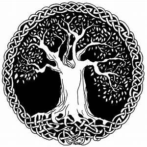 Dessin Symbole Viking : arbre de vie celtique avec les racines entrelac es arbre arbre celtique images arbre de ~ Nature-et-papiers.com Idées de Décoration