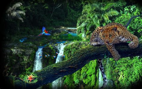 Amazon Jungle Tree Leopard Parrots Wallpaper Hd 3840x2400