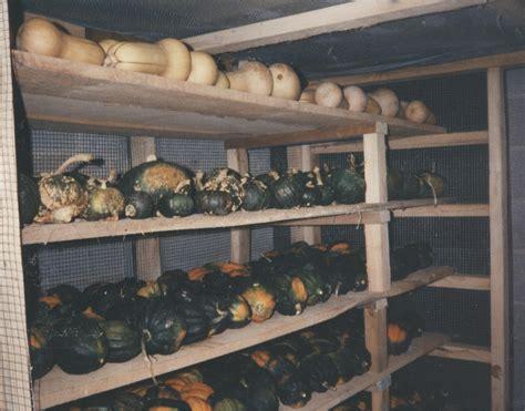 potato storage box plans plans diy  captain bed