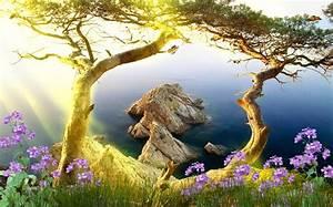 Download Beautiful Landscape Animated Wallpaper