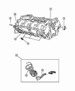 Dodge Ram 1500 O Ring  Engine Block Heater