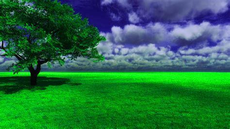 Nature Background Picsart Wallpapershareecom