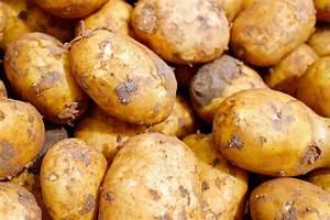 Kartoffeln Aufbewahren Küche : kartoffeln kochen so geht 39 s ohne schnellkochtopf ~ Michelbontemps.com Haus und Dekorationen