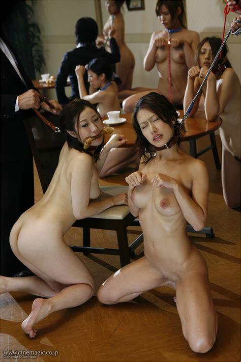 Pantyhosed Petgirl Photos Sexual Woman