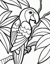 Coloring Luau Pages Popular sketch template