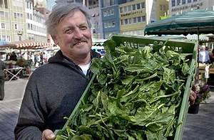 Spinat Als Salat : marktf hrer spinat als salat stuttgart stuttgarter zeitung ~ Orissabook.com Haus und Dekorationen