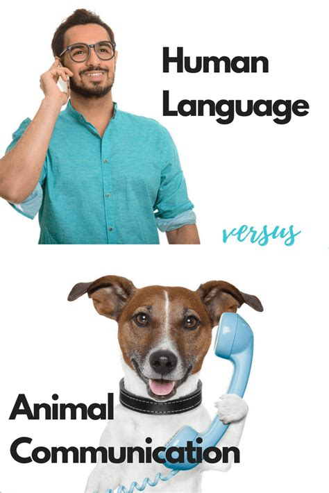 human language    animal communication