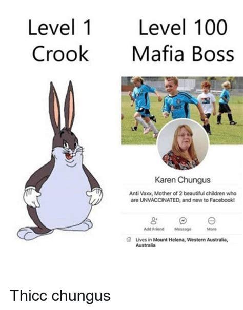 level  level  crookmafia boss karen chungus anti vaxx