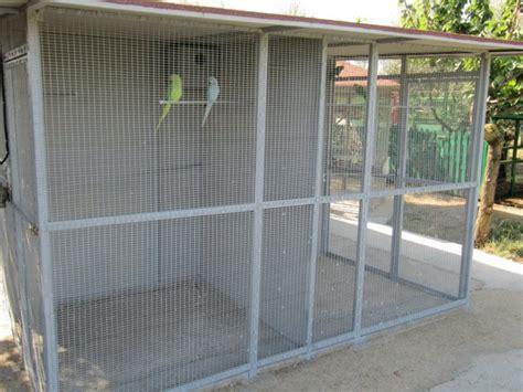 gabbie per allevamento uccelli le nostre voliere allevamento di pappagalli alemau roma
