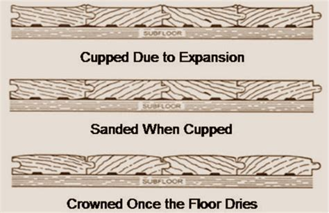 Hardwood Floors Cupping Humidity by Wood Flooring Problems Moisture Related Floor Central