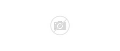 Oregon County Clackamas Unincorporated Areas Wikipedia Svg