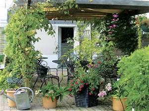 Plantes D Extérieur Pour Terrasse : terrasse jardin avec r sidences secondaires ~ Dailycaller-alerts.com Idées de Décoration