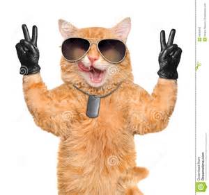 peace cats cat with peace fingers in black leather stock photo