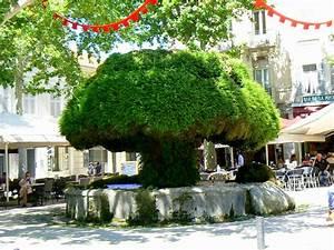 Garage Salon De Provence : panoramio photo of fontaine moussue salon de provence france ~ Gottalentnigeria.com Avis de Voitures