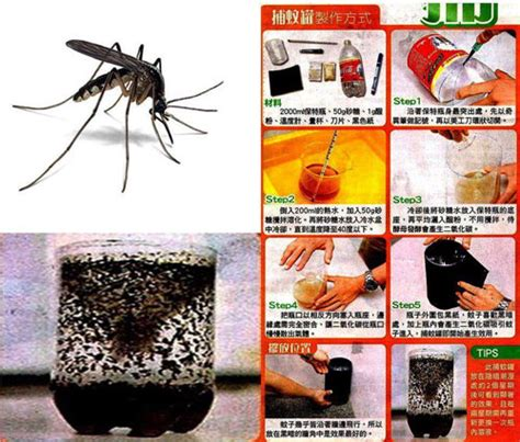 mosquito away do it yourself home mosquito trap safety from disease begins at home