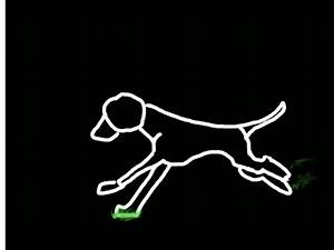 running dog grass animation by jrem090 on DeviantArt