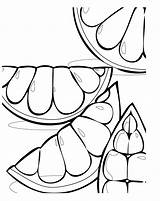 Grapefruit Pages Coloring Tim Topsy Fruit Colouring Template Cliparts Citrus Games Yoshi Clipart Searches Recent Favorites Sun sketch template