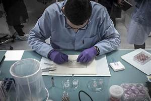 Why failure to replicate findings can actually be good for ...