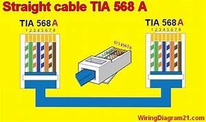 Cat5 Straight Wiring Diagram