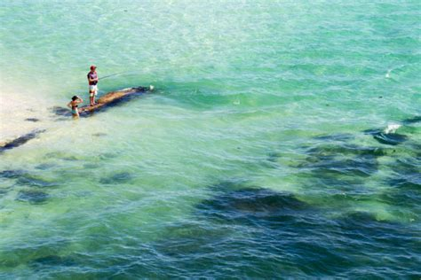 Honda Snorkeling by Bahia Honda State Park Is Gorgeous Known In