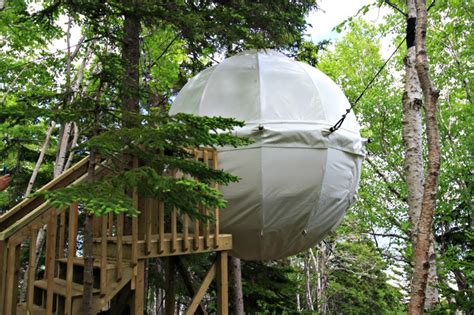 bed suspended near the parks canada cocoon tree bed family halifax