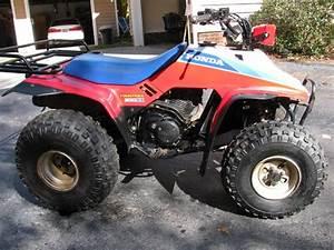 1986 Honda Trx 200  Four Trax