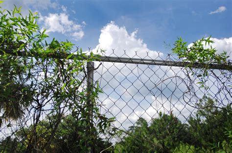 dress   drab chain link fence homeowners