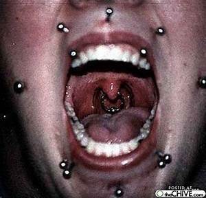 Insane Body Piercings - XciteFun.net
