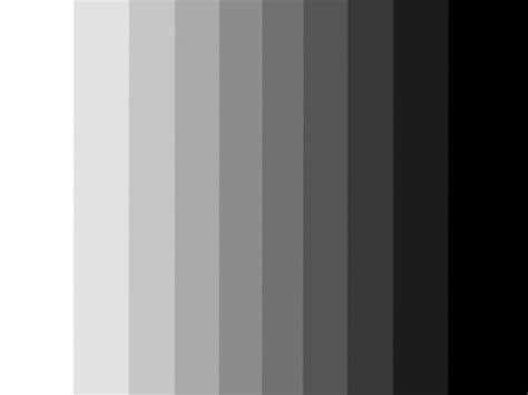 Black White Gray  Download Lengkap