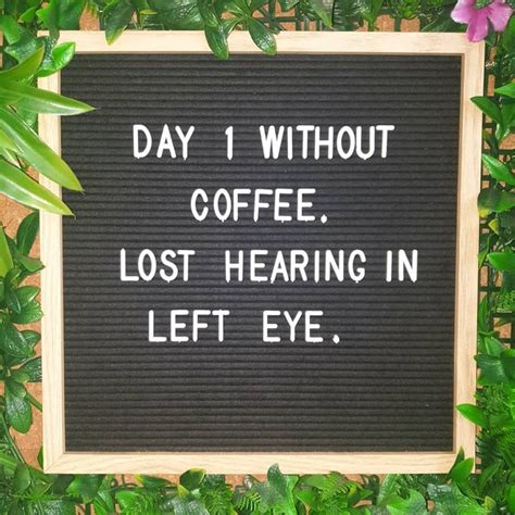 These are the next best thing to having another cup of coffee (but who are we kidding, you know i'm going to have another cup anyway). What does your day without coffee look like? #coffee #coffeelover #coffeetalk #coffeetime # ...