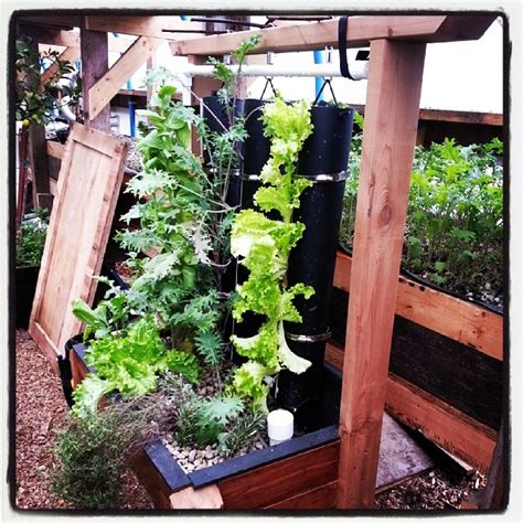 Vertical Gardens How To Build by How To Build A Vertical Vegetable Garden Easier Than You