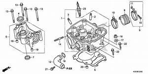 Honda Oem Part 19523