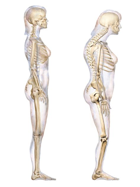 Tips to Improve Posture and Hunched Back - Vision Body Mind