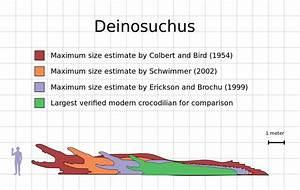 File Deinosuchus Size Estimate Comparison Chart Svg