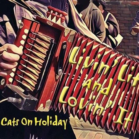 cats  holiday home facebook