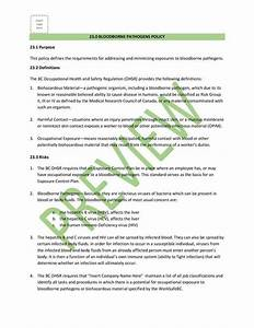 Cleaning Service Safety Manual Plan I Bc Greystone Safety