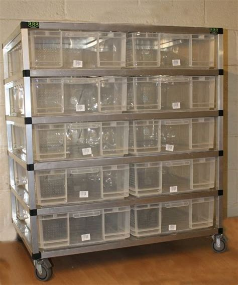 reptile rack system snake rack snake rack snake reptiles and