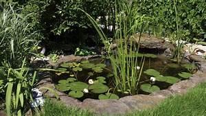 Miniteich Pflanzen Set : wie lege ich einen teich an wie lege ich einen gartenteich an tipps f r den teichbau tipps und ~ Buech-reservation.com Haus und Dekorationen