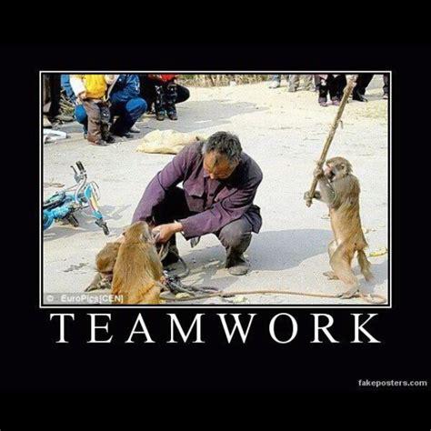 Teamwork Meme - teamwork humor pinterest teamwork