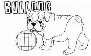 Bulldog Animal Coloring Pages Cute Little American Bulldog ...
