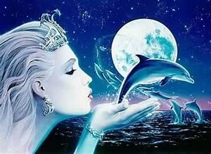 Schöne Delfin Bilder : pin von sarah lessert auf tiere delfine pinterest delfine bilder tiere und mausi ~ Frokenaadalensverden.com Haus und Dekorationen