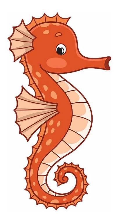 Seahorse Clipart Sea Horse Clip Transparent Creazilla