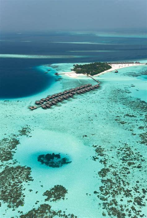 Constance Moofushi Resort Maldives Diving Paradise