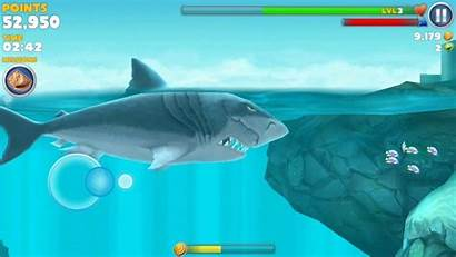 Megalodon Shark Hungry Eating Evolution Santa Dropping