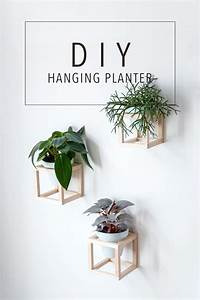 Top Best Apartment Plants Ideas On Pinterest Air Cleaning