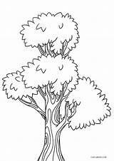 Coloring Tree Printable Pages Sheets Printables Cool2bkids Books Duathlongijon Christmas sketch template