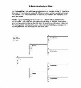 Three Generation Pedigree Chart Pedigree Chart Template 9 Free Sample Example Format