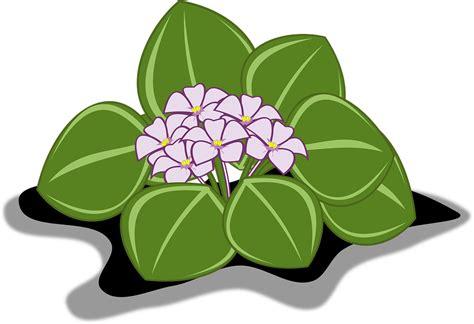 free vector graphic violet clip flor free on pixabay 1296430